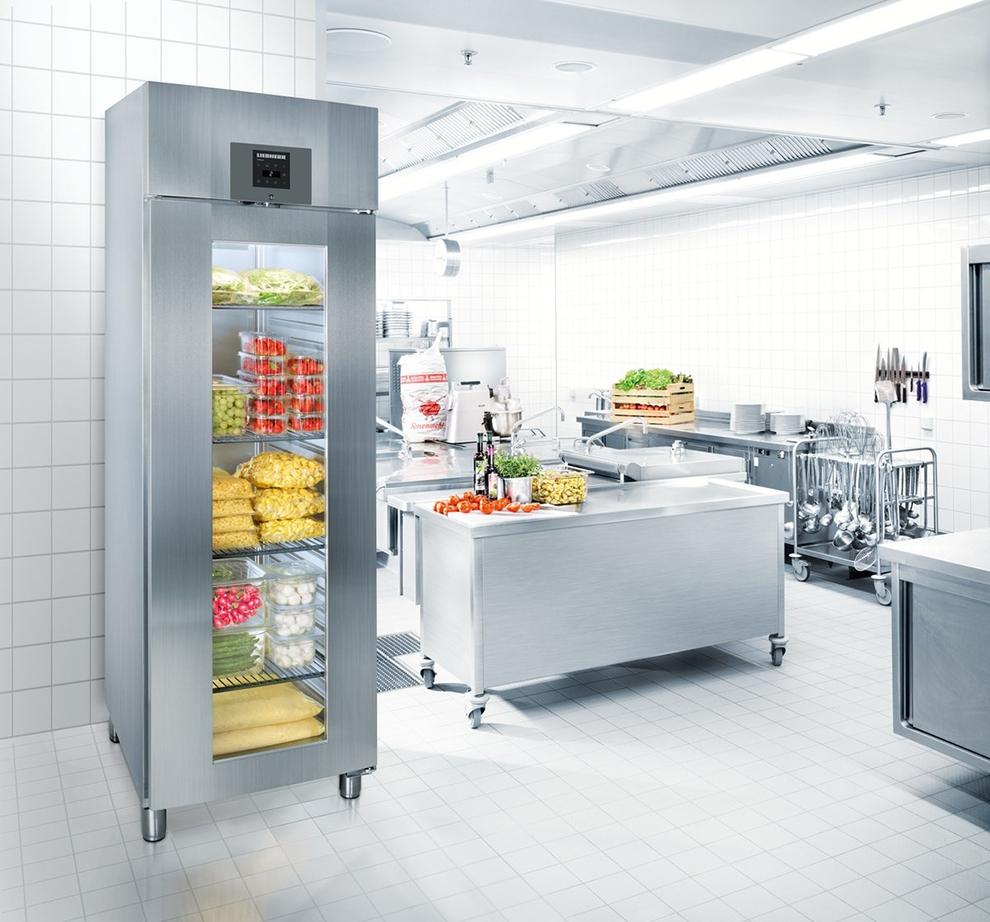 Холодильный шкаф LIEBHERRGKPv 6573 ProfiLine - 4