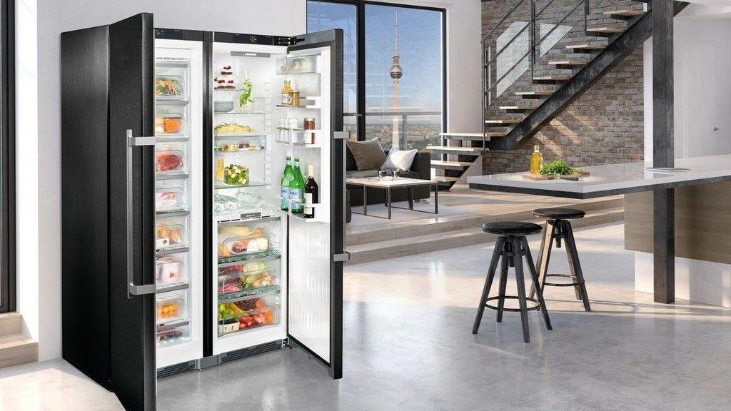 Холодильник LIEBHERR SBSbs 8673 Premium BioFresh NoFrost - 1